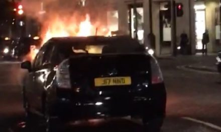 Another Prius Fire : How Long Before Someone Is Burned To Death?
